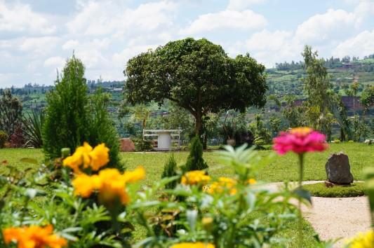 Zukünftiges Gartenprojekt