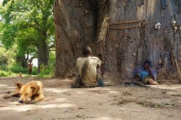 Mittagspause im Schatten der Bäume
